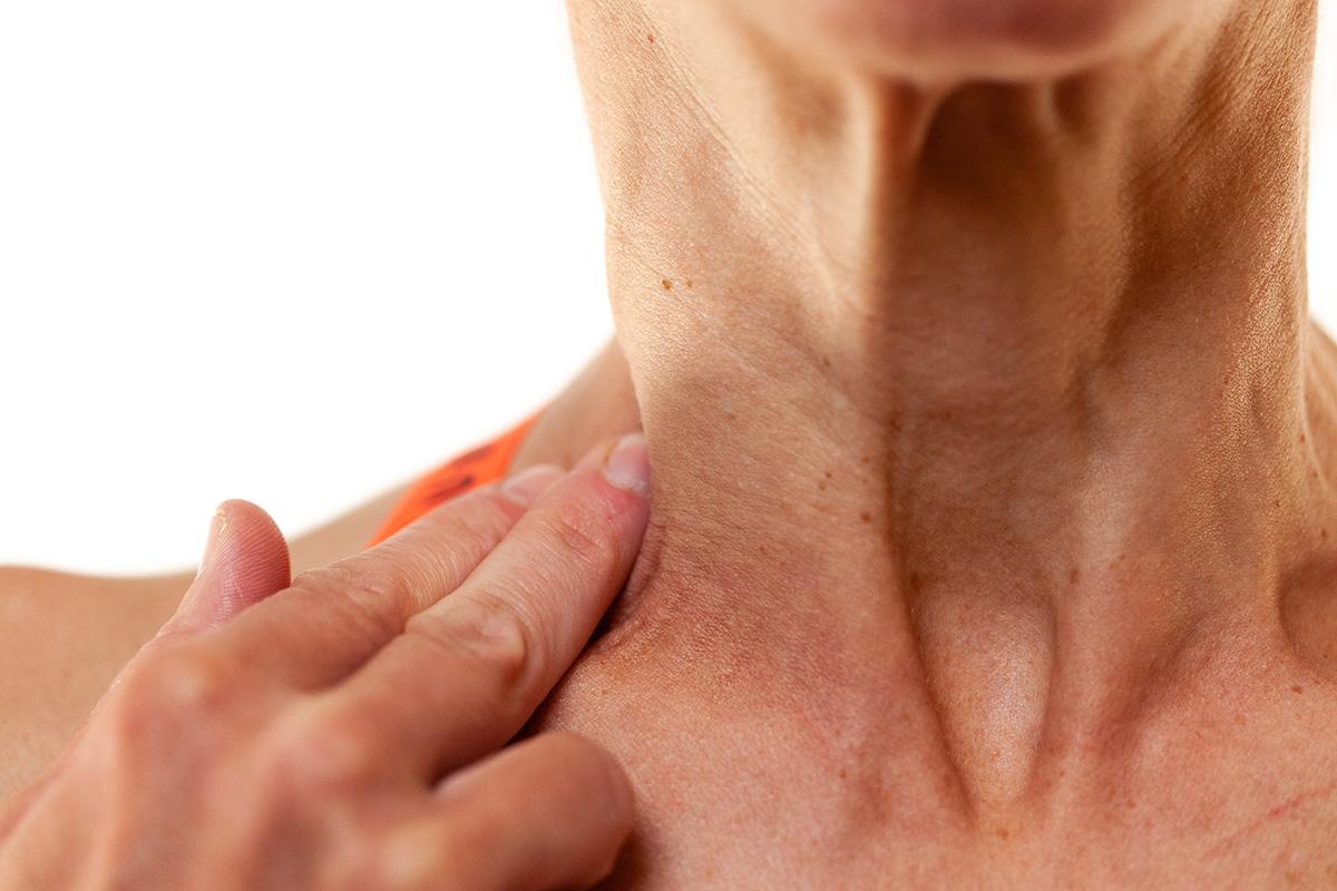 Mejorar nuestra respiración. Músculos escalenos del cuello