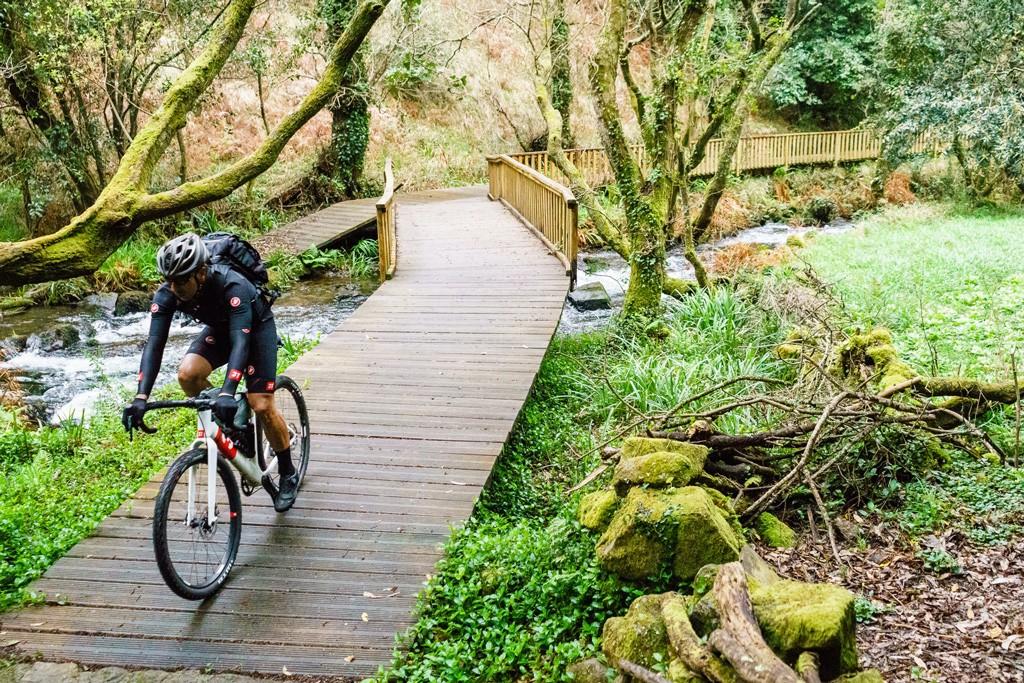 Zona de bosque con una gravel pasando en la ruta