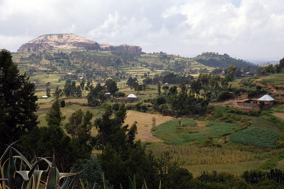 Zona rural del altiplano a 2.600-2.700 m de altitud aproximadamente
