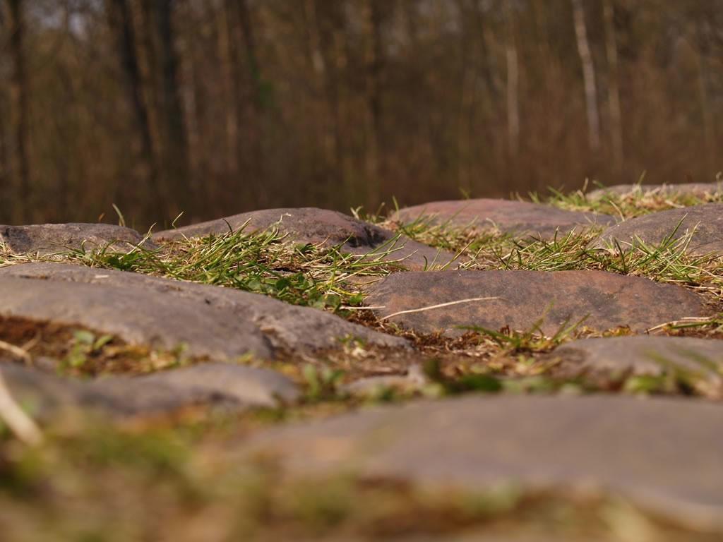 El pavés de la Paris Roubaix de cerca