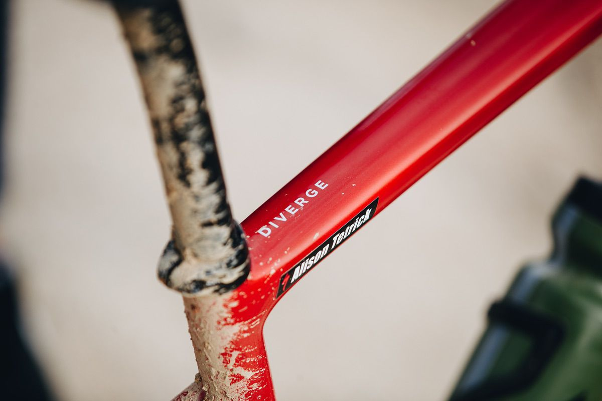 Specialized Diverge con Roval Terra