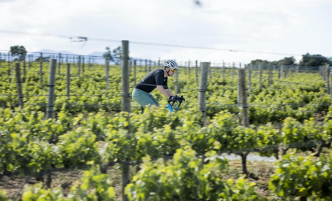 Cruzando una zona de viñas en el Sportful Gravel Day